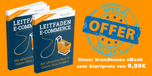 eBook: Leitfaden E-Commerce – der ultimative Start in Online-Shop Projekte